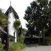 Rainbow Springs Is a Must in Rotorua, New Zealand