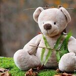 Why All Adults Should Invest in a Stuffed Animal