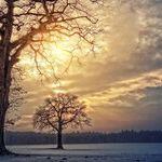 Dawn of the Aries Sun