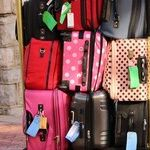Mutant Suitcase