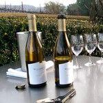 The Hidden Wineries of Oxnard, California
