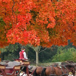 History Lives on in Colonial Williamsburg, Virginia
