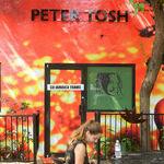 To Celebrate Reggae Music, Jamaica's the Place