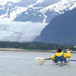 Wildlife and Scenery Are Big in Alaska