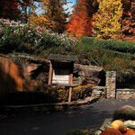 Spend Halloween Nights at Dollywood