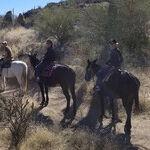 A Magical Ride in Arizona's Sonoran Desert