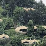 Luxury Digs Near Rwanda's Mountain Gorillas