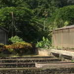 Chocolate and Honey Heaven in Grenada