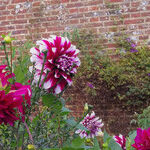 The Sissinghurst Castle Garden Was Cultivated With Love