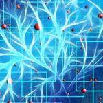 Those Neurotransmitters