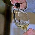 The Somm Cheating Scandal