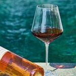 2019 Wines in Review