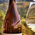 Winery to Watch: Oregon's WillaKenzie