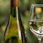The White Wine Decant