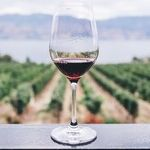 Family Wineries Shine In San Diego
