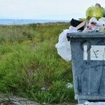 Trash Talk: Plastic at Sea Is Toxic and Terrible for You and Me