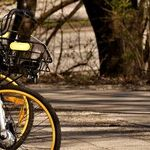 To Bike or Not to Bike: Is That Even a Question?