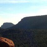 Deepak Knows: The Future of Wellbeing Is Y-O-U