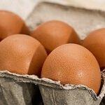 Eggs in Favor