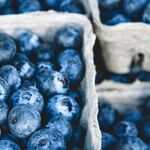 Blueberry Treasures