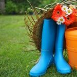 Gifts for People With Green Thumbs