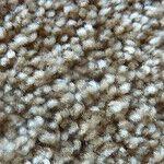 Got a Carpet Stain? Twist it Out