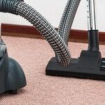 How to Stop Hating Your Carpet