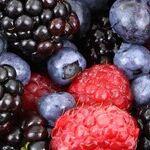 6 Super Easy Ways to Get Rid of Fruit Flies