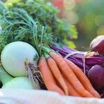 Join a CSA for Your Health and Your Wealth