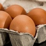 How to Freeze Eggs, Dairy Products and More