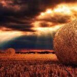Harvest Moon Eve