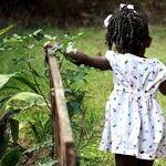 Stranger Danger and Other Child Safety Myths