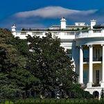 Trump's Last Stand: the Debate