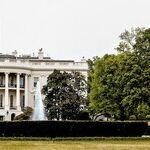 Biden Has To Prove His Own Mettle in VP Pick