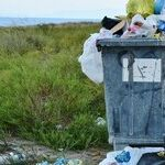 'Compostables' Don't Reduce Garbage Waste Unless They're Actually Composted