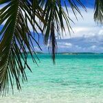 Grant Protected Status to Bahamians