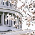 Rep. Greene's Toxic Antics Are Further Poisoning U.S. politics. Expel Her, Already.