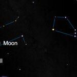 Viewing the Moonlit Geminid Meteors