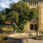 What the Stanford Rape Case Reveals