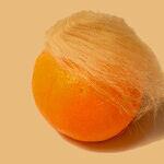 A Confession, By Donald Trump