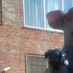 Who's Afraid of a Giant Inflatable Rat?