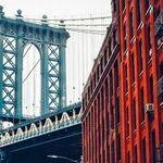 New York Mayoral Primary Shows Split Between Democratic Constituencies