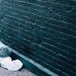 The Homeless You Will Always Have With You, but Not Too Close