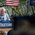 Bernie Sanders, Joe Biden and Household Pets