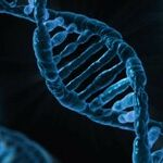 Forensic Nightmare: The Perils of Touch DNA