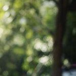 New York Times Smears Kavanaugh All Over Again