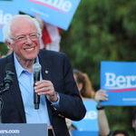 Sanders: 'Democratic' Control Freak