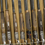 The Second Amendment Without Scalia
