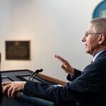 Fauci vs. Trump -- Who's Right?