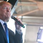 In Defense of Donald Trump's Namecalling